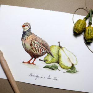 Partridge in a Pear Tree Print