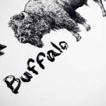 """Black and white text reading """"Buffalo"""" beside a highly detailed back and white drawing of a buffalo's head"""
