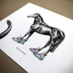 """Black and white drawing of a horse wearing bright coloured trainers above text reading """"Horseshoes"""" on a white background"""
