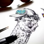 "Black and white drawing of two llamas heads wearing a cap with the text ""fresh"" and purple and yellow sunglasses"