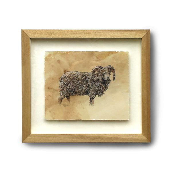 Sheep No. 2 Original