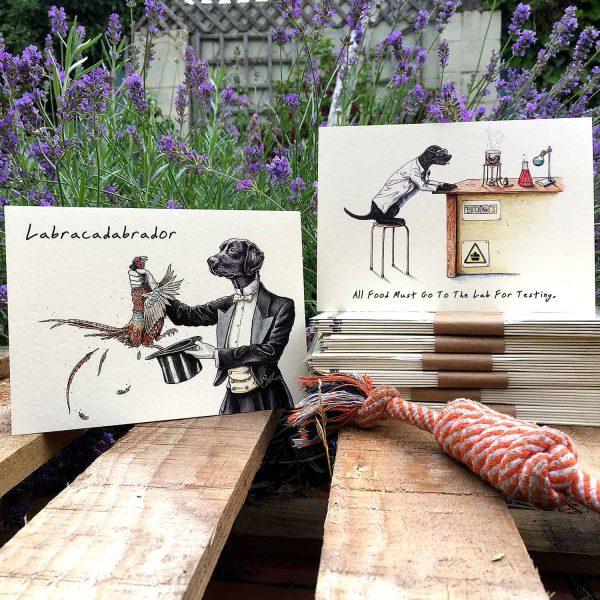 Labrador Cards Set