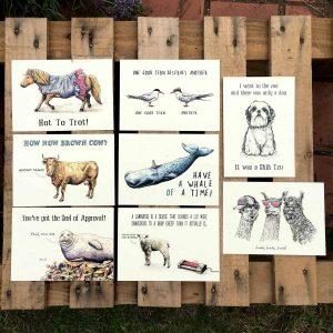 Animal Cards Bundle