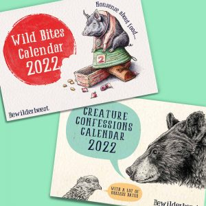 PRE-ORDER 2022 Calendars Pack