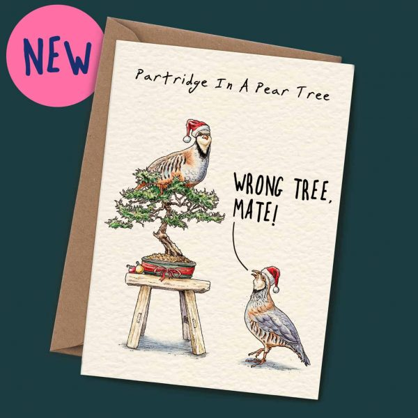 Partridge Christmas Card